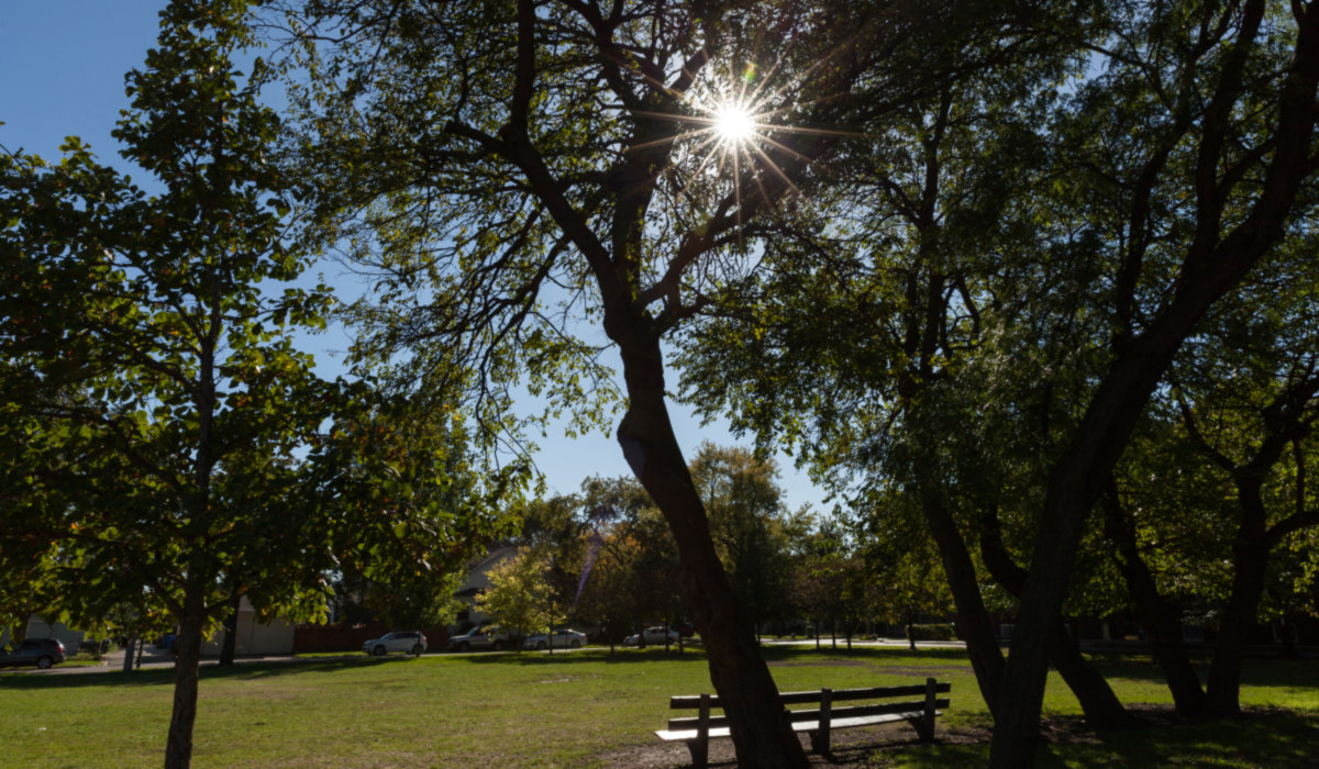 Irving Park photo