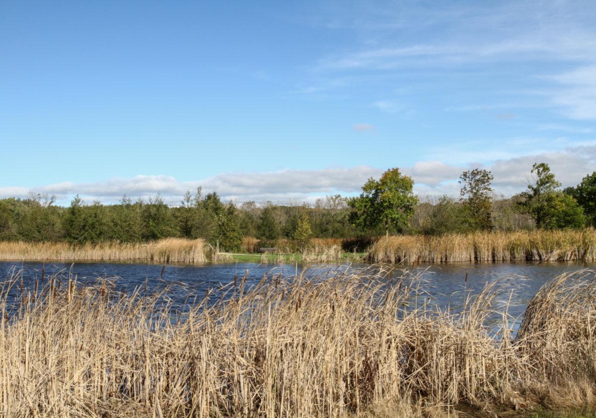 Lincolnshire photo