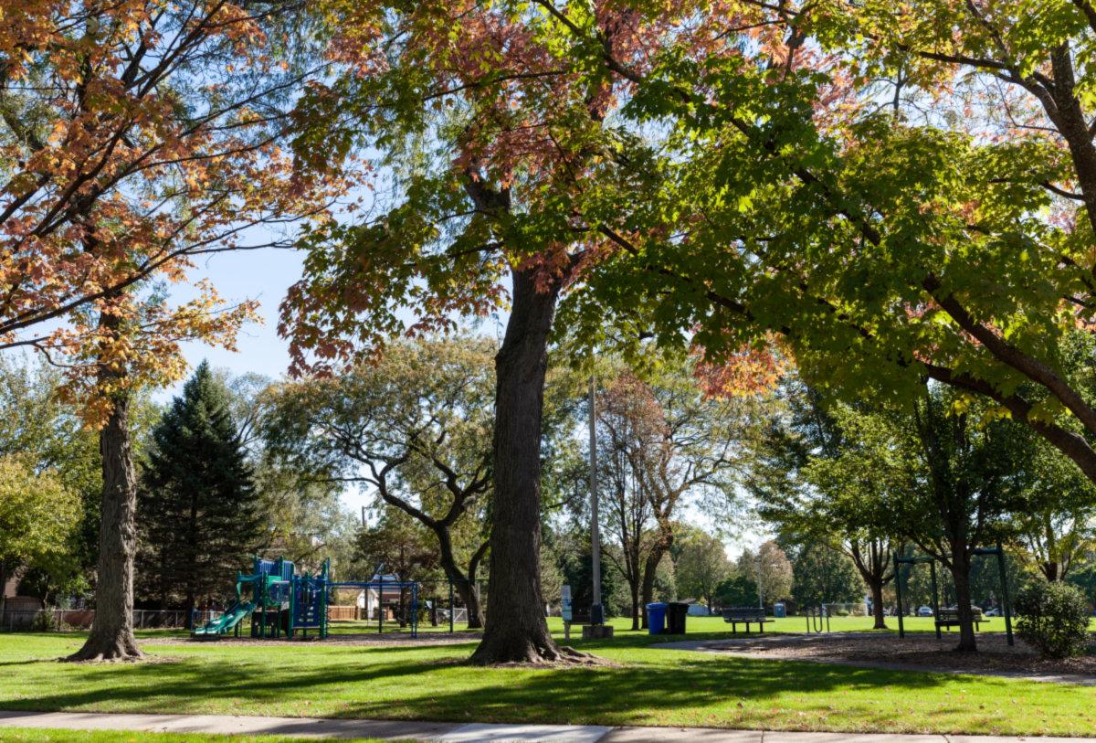 Norwood Park photo