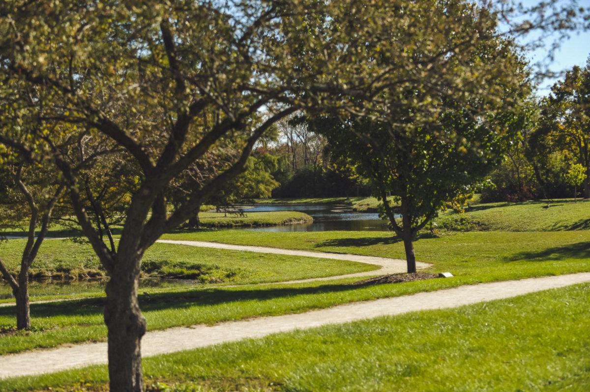 Oak Lawn photo