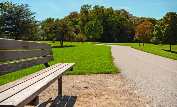 Villa Park photo